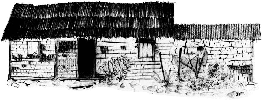 Dos estudos realizados entre 1994 e 1998 no Vale do Ribeira, desenhos de observação como este, de 1995, ajudaram o arquiteto Silvio Cordeiro a compreender a construção do habitat em comunidades na paisagem rural daquela região. Vemos aqui uma típica casa em taipa de mão, próxima a cidade de Iporanga, em 1995. Na cobertura da parte baixa, onde situa-se a cozinha, o sapê (visto no corpo principal da morada) foi substituído por telhas de fibrocimento. Desenho: Silvio Luiz Cordeiro.